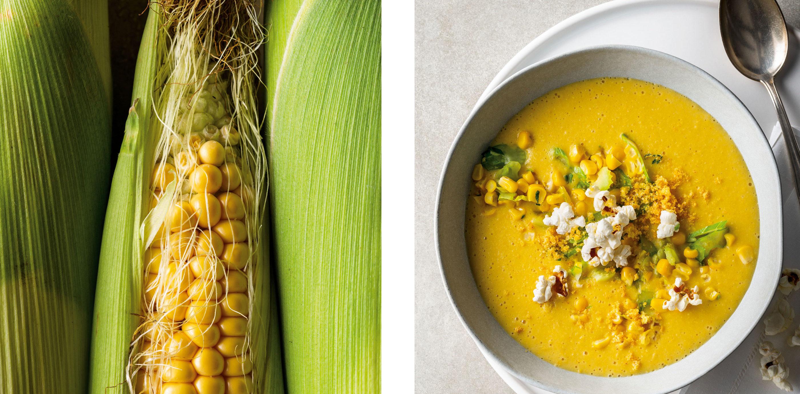 Zwei Fotos, links: goldgelbe Maiskolben, rechts: Maissuppe mit Popcorn-Topping